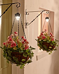 Hanging Flower Basket - Buy 1 Get 1 Free