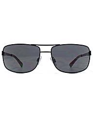 American Freshman Aviator Sunglasses