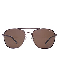 Levis Square Aviator Sunglasses