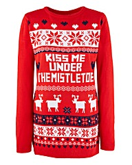 Xmas Kiss me Under the Mistletoe Jumper