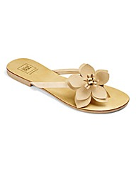 Sole Diva Flower Toeposts