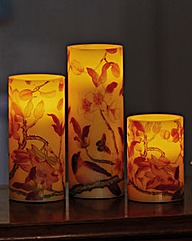 LED Candles Botanic Set of 3