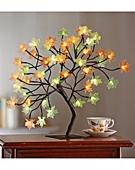 Maple Tree Light