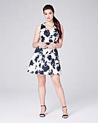 Coast Kristen A Line Print Dress