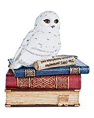 Snow Owl on Books Secret Trinket Box