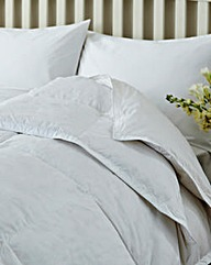 Goose Feather and Down Pillow Pair