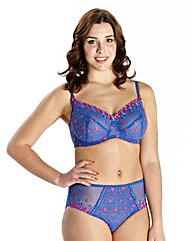 Full Cup Wired Rita Bra Hyacinth