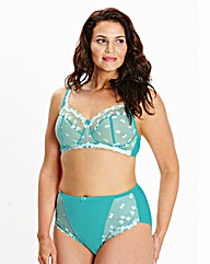 Ava Full Cup Non Wired Teal Bra