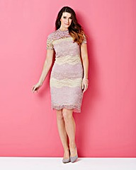 Nude/Pink Lace dress