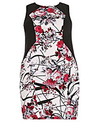 Samya Floral Fitted Dress