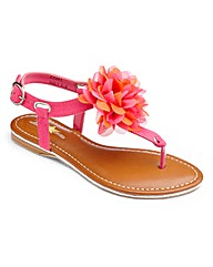 Joe Browns Toe-Post Sandal EEE Fit