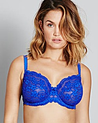 Daisy Lace Cobalt Blue Full Cup Bra