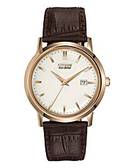 Citizen Eco-Drive Vintage Style Watch
