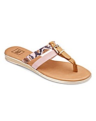 Sole Diva Buckle Toepost Sandals D Fit