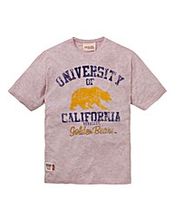 American Freshman T-Shirt Regular