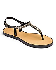 Sole Diva Toe Post Sandals