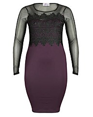 Praslin Mesh Sleeve Lace Dress