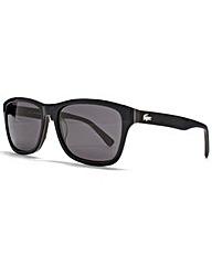 Lacoste Wayfarer Sunglasses