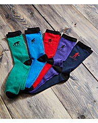 Evolution of Man 5 Days Socks