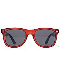 American Freshman Wayfarer Sunglasses