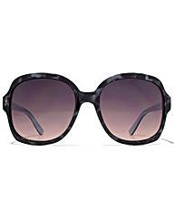 American Freshman Glamour Sunglasses