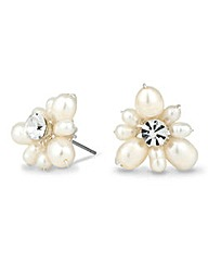 Alan Hannah Devoted Pearl Spray Earrings