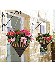 Self-Watering Hanging Baskets Set of 2