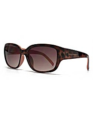 French Connection Classic Sunglasses