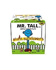 Mr Tall Grow Kit