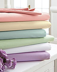 Egyptian Cotton Flat Sheet Pack of 2