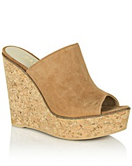 Daniel Parsonage Wedge