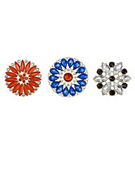 Mood Pack of three floral stone brooches