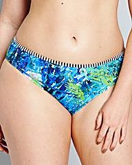 Panache Swim Elle Classic Brief