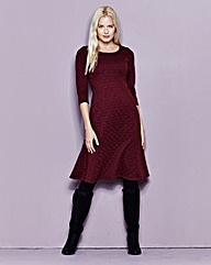 Oxblood Textured Skater Dress
