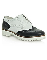 Daniel Haxby Navy  Brogue