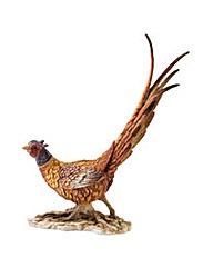 BFA Contemporary Classics Pheasant