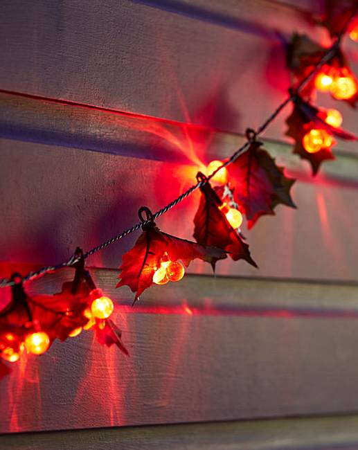 Holly & Red Berry String Lights J D Williams
