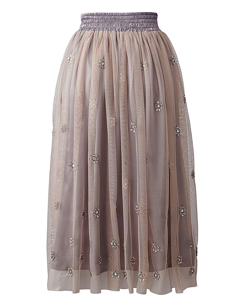 Sprinkle of Glitter Mesh Skirt