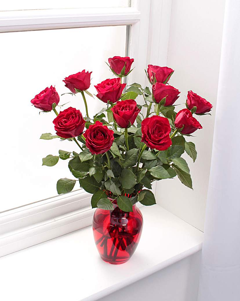 Image of 12 Red Rose Bouquet and Glass Vase