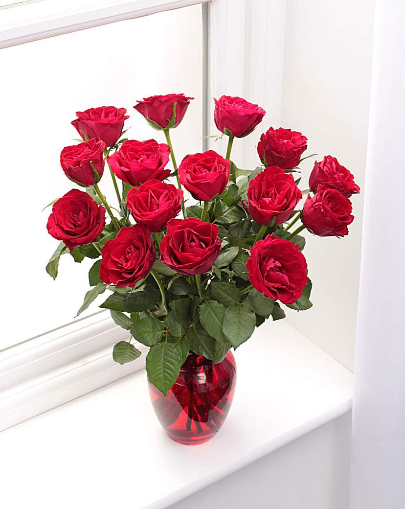 Image of 15 Red Rose Bouquet and Glass Vase