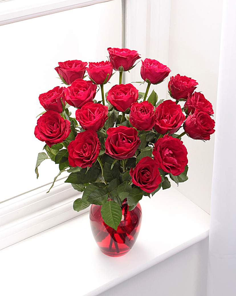 Image of 18 Red Rose Bouquet and Glass Vase