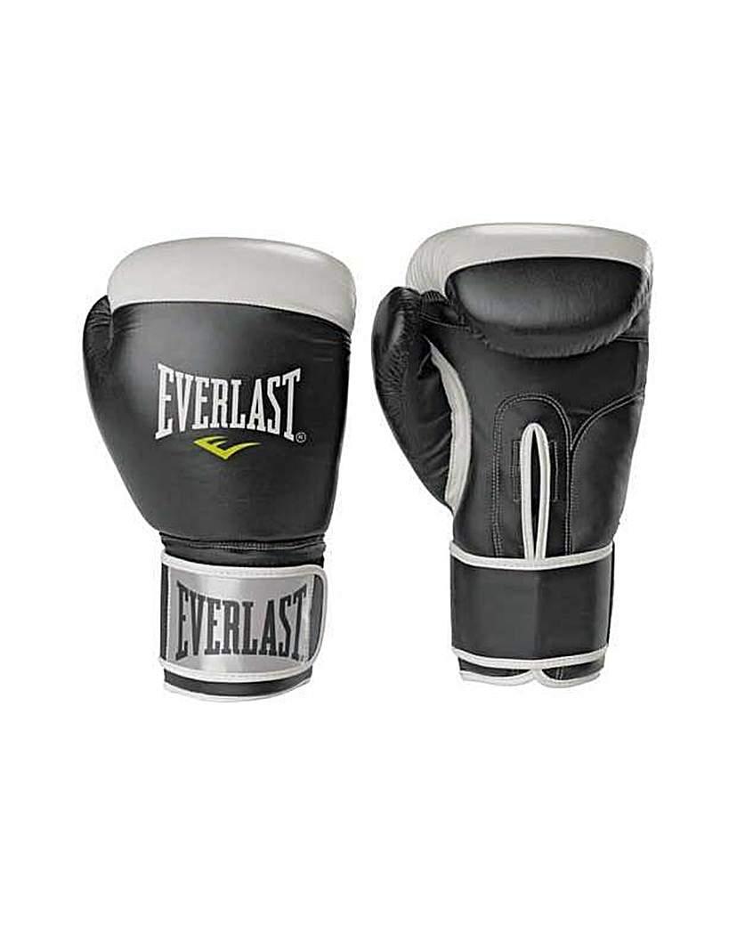 Everlast 14oz Leather Boxing Gloves.