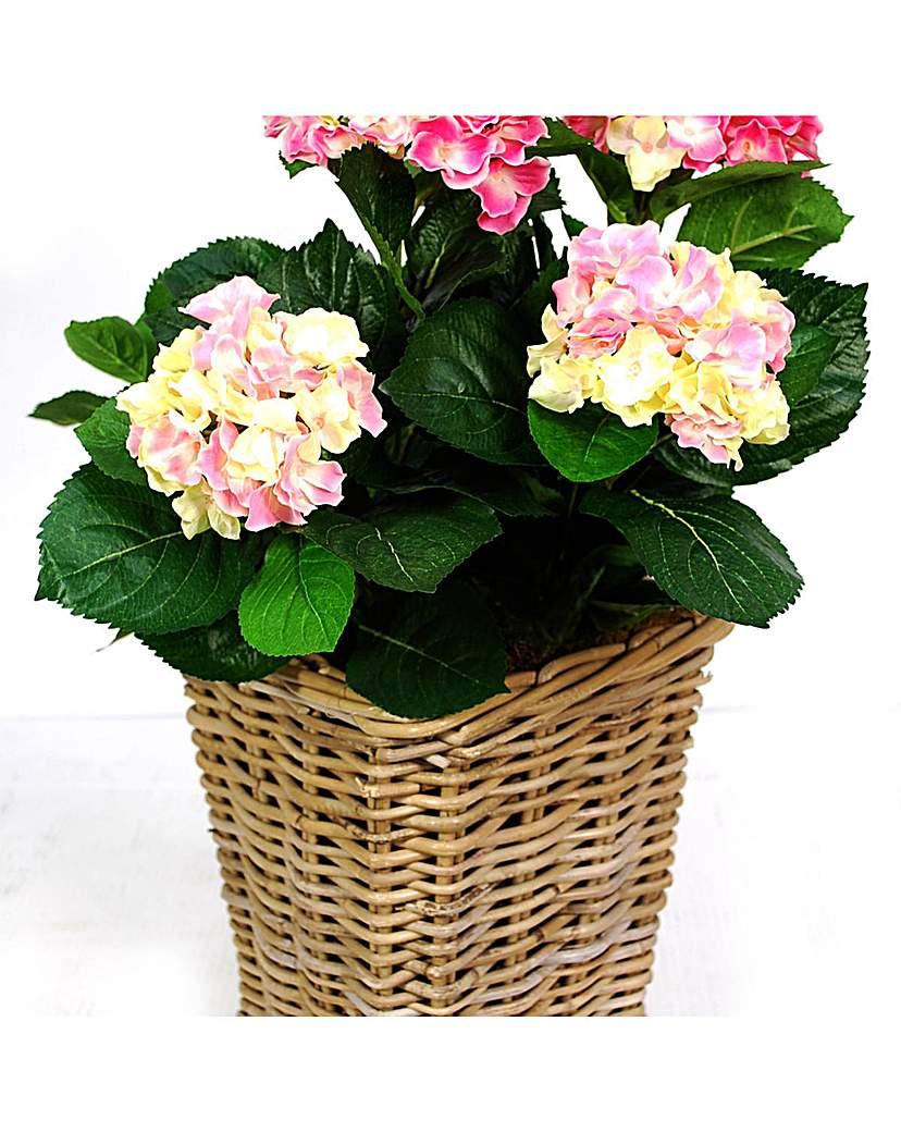 Image of Artificial Plant Hydrangea In Rattan