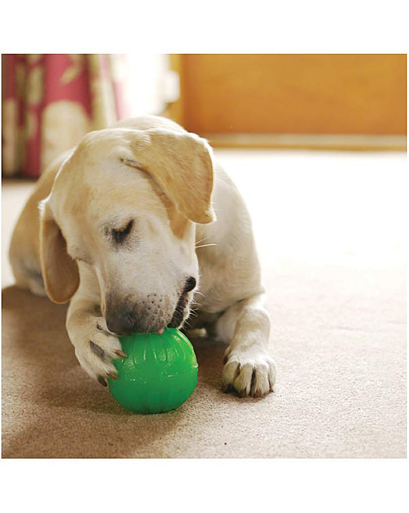 Image of Treat Dispensing Chew Ball Large