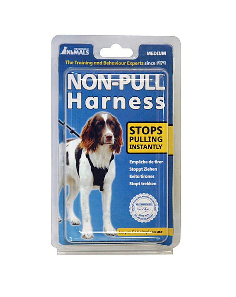 Non Pull Harness Medium