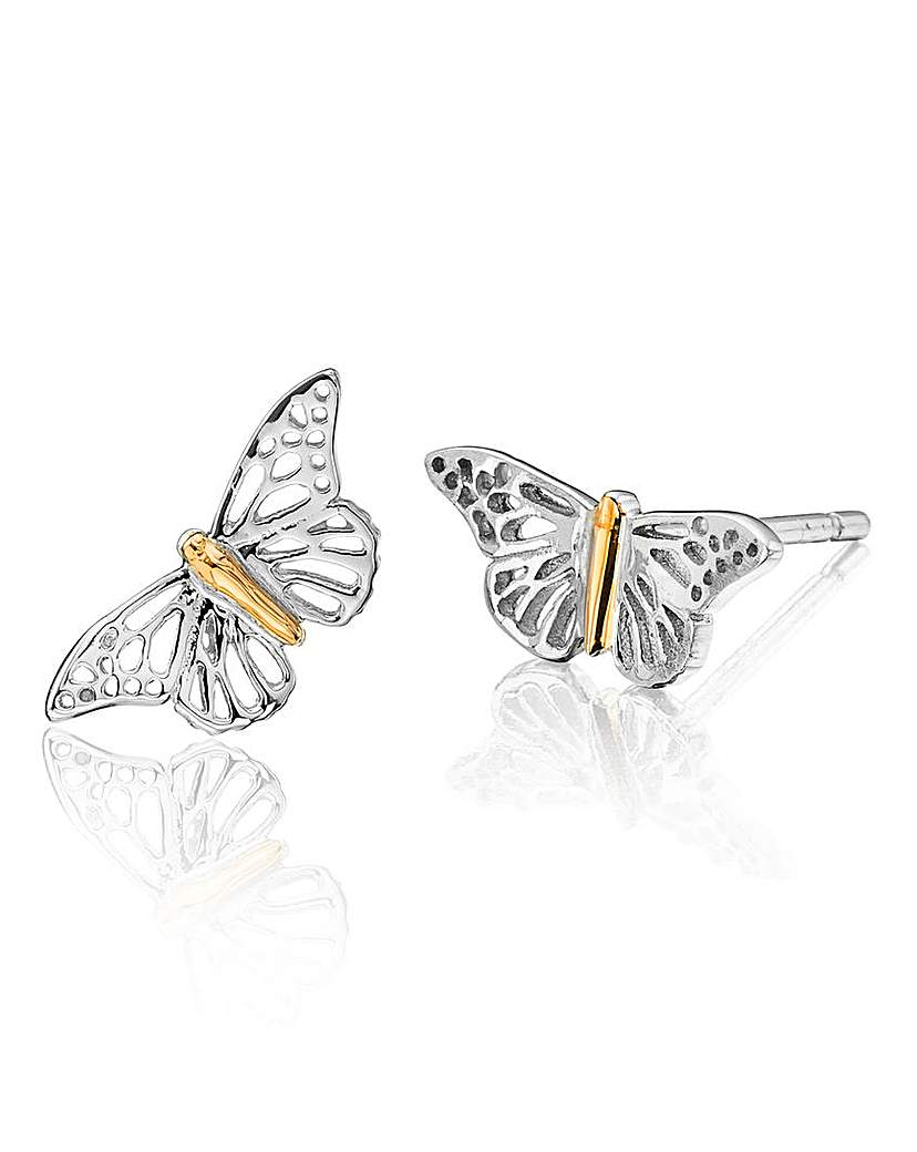 Image of Clogau Butterfly Stud Earrings