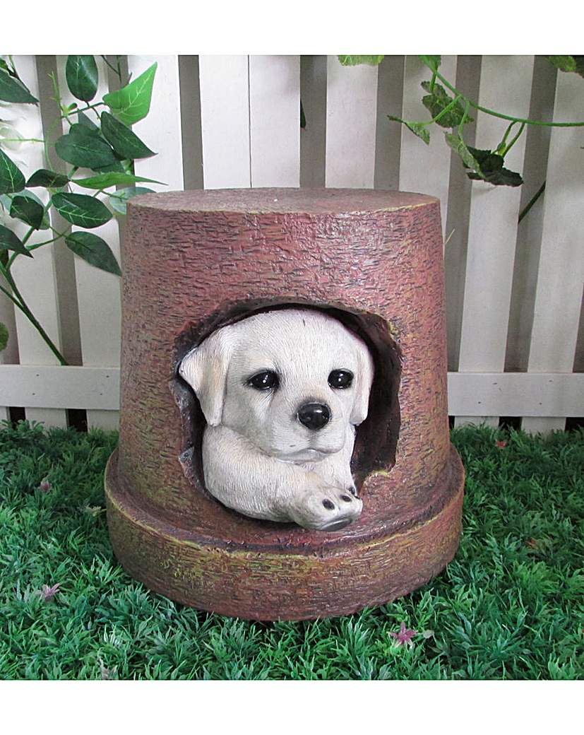 Image of Dog and Planter