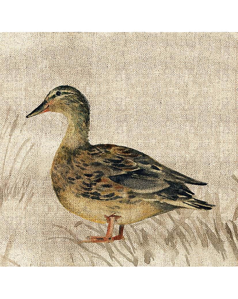 Arthouse Duck Canvas