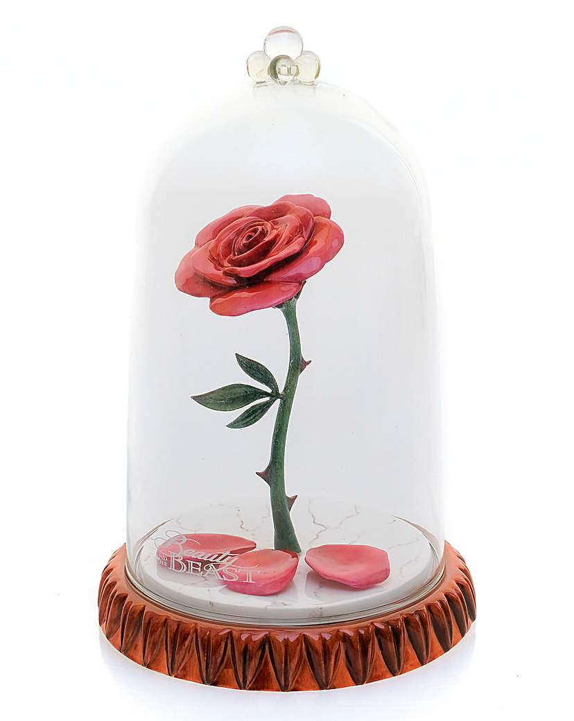 Image of Beauty and the Beast Rose in Dome