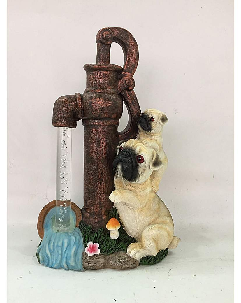 Dogs with Solar Water Pump
